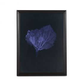 Peinture Dark Blue Coral Art Photo